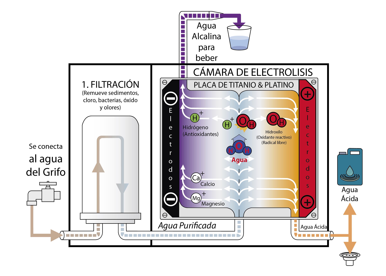 Circuito Ionizador De Agua : Como funciona un ionizador de agua kangenmexico